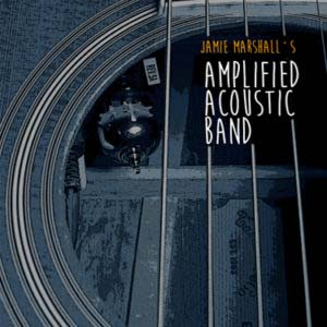The Amplified Acoustic Band - Demo